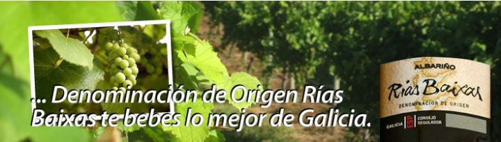 C.R.D.O. Rías Baixas