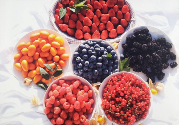 Euroberry Marketing, S.A.