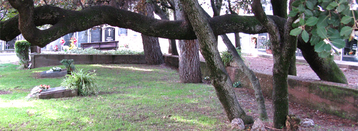 Asociación de Funerarias y Cementerios Municipales