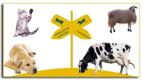 Gaherproga, S.L. Nutrición Animal
