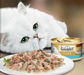Gourmet - (Nestlé Purina Petcare España, S.A.)