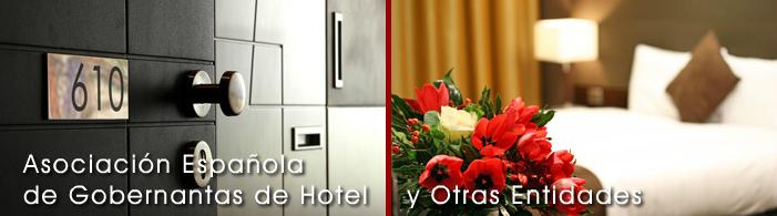 Asociación Española de Gobernantas de Hotel y otras Entidades (ASEGO)