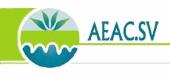 Logotipo de Asociación Española Agricultura de Conservación Suelos Vivos (AEAC-SV)