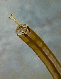 Foto de Endoscopios