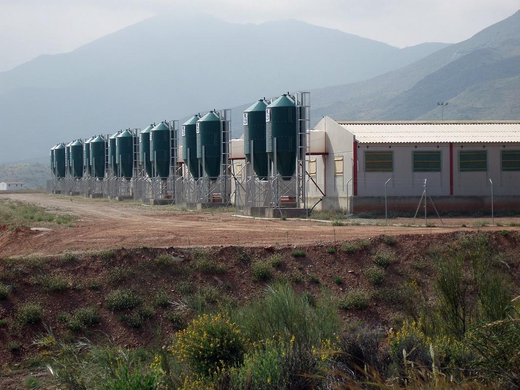 Foto de Batería de silos verdes