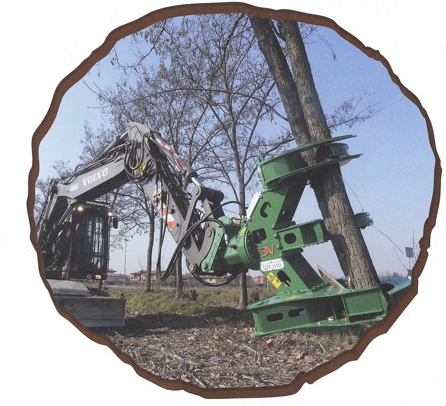 Foto de Pinzas para deforestación