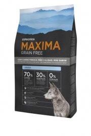 Foto de Alimentos para cachorros de perros
