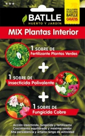 Foto de Mix plantas interior