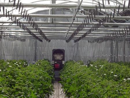 Foto de Calefacción de aire para invernaderos