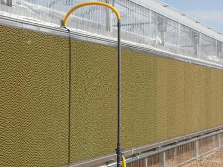Foto de Enfriamiento evaporativo para invernaderos