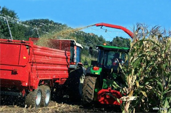 Foto de Picadoras de maíz
