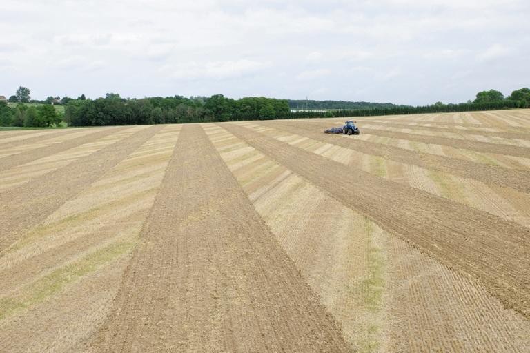 Foto de Sistemas de control para cultivos