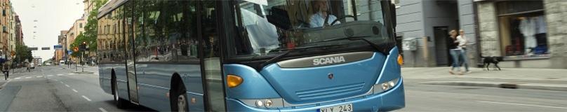Foto de Autobuses de uno y dos pisos