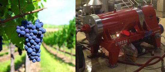 Foto de Centrífugas para la industria vitivinícola