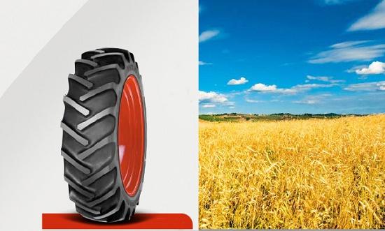 Foto de Neumáticos convencionales