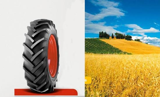 Foto de Neumáticos convencionales para tractores