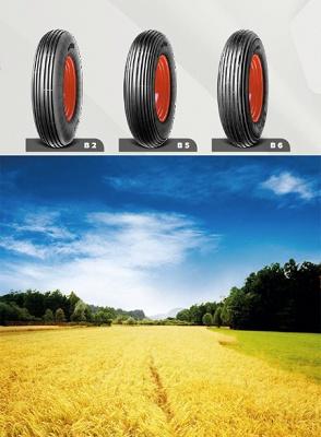 Foto de Neumáticos para carretillas