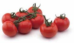 Foto de Semillas de tomate de calibre medio