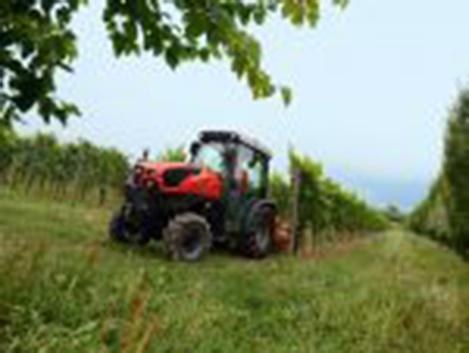 Foto de Tractores viñeros y fruteros