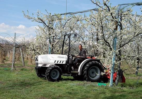 Foto de Tractores fruteros y para viñedos