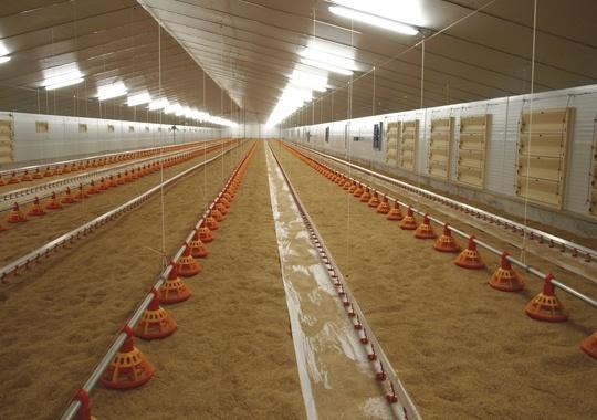 Foto de Sistemas de alimentación