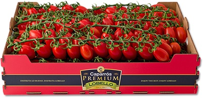 Foto de Tomates en rama