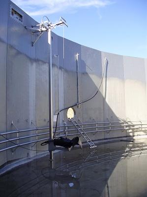 Foto de Sistemas de suportación para agitadores biogás