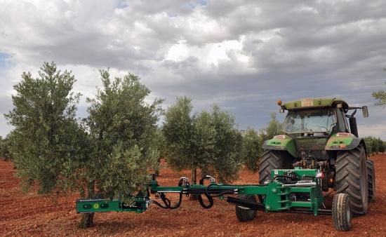 Foto de Vibrador de olivos