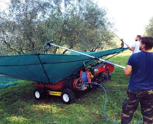 Foto de Paraguas recolector motorizado para frutos colgantes