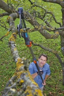 Foto de Tijeras de pértigas y mangos telescópicos