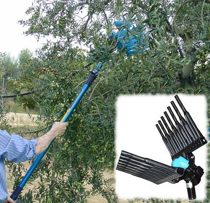 Foto de Vareadores para olivos y almendros