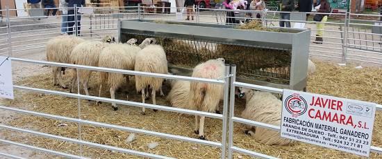 Foto de Comederos para ovino