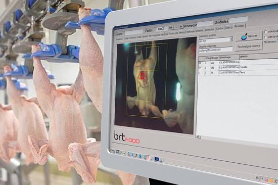 Foto de Control de calidad por visión artificial de canales de pollo