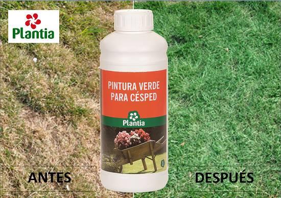 Pintura verde para cesped plantia bures profesional s a for Pintura pared verde