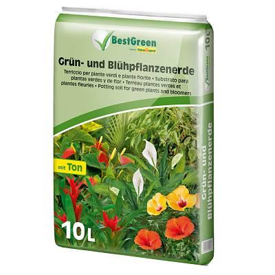 Foto de Sustratos para plantas verdes y con flor