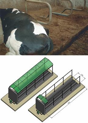 Foto de Purín para cama de vacas