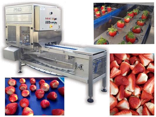 Foto de Máquina para la extracción de pedúnculo y corte de las fresas