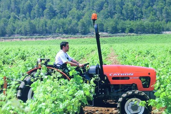 Foto de Tractor viñero