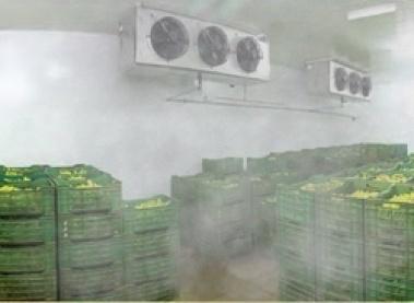 Foto de Nebulización para cámaras de conservación