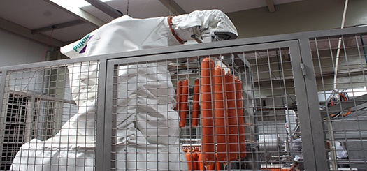 Foto de Sistemas para carga de embutidos