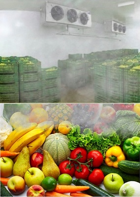 Foto de Sistema de Nebulización