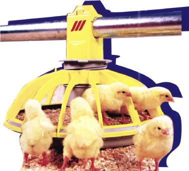 """Foto de """"Desinfectante contra la gripe aviar"""""""