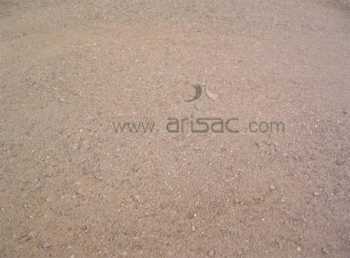 Foto de Las arenas y el albero