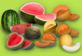 Foto de Melones y sandías