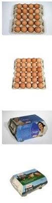 Foto de Huevos de gallina