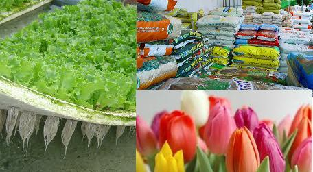Foto de Sistema de limpieza de bandejas de cultivo