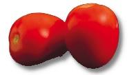 Foto de Tomates pera de Almería