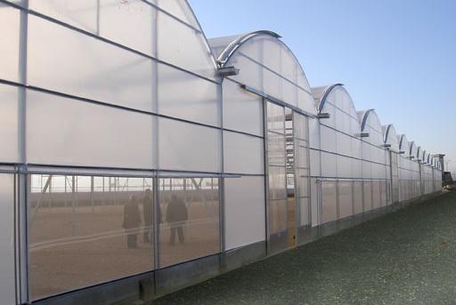 Foto de Invernadero multicapa de techo curvo