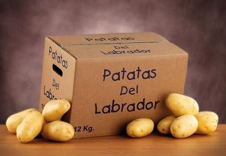 Foto de Patatas del labrador
