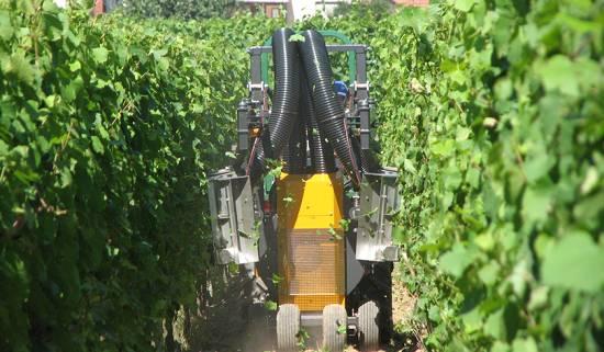 Foto de Deshojadoras para tractor zancudo